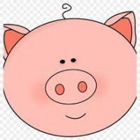 عید نزدیکه ، سال خوک مبارک 🐷